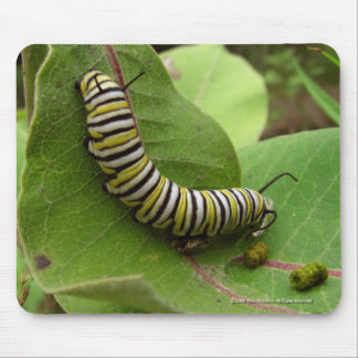 Monarch Caterpillar Mouse Pad