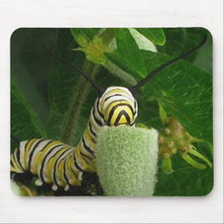 MONARCH CATERPILLAR mousepad