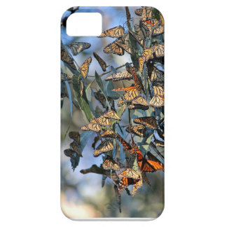 Monarch Cluster iPhone 5 Cover