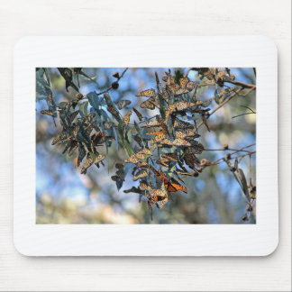 Monarch Cluster Mouse Pad