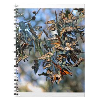 Monarch Cluster Spiral Note Book