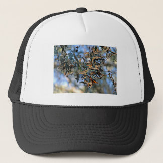 Monarch Cluster Trucker Hat