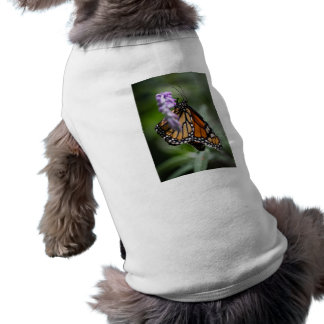 Monarch Danaus Plexippus Shirt