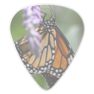 Monarch Danaus Plexippus White Delrin Guitar Pick