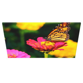 Monarch Garden Canvas Print