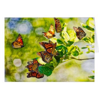Monarch Gathering Card