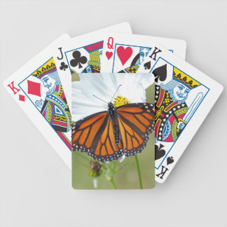 Monarch on Cosmos Bicycle Playing Cards