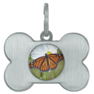 Monarch on Cosmos Pet ID Tag