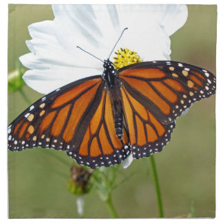 Monarch on Cosmos Printed Napkins