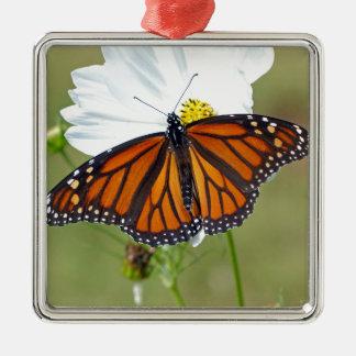 Monarch on Cosmos Silver-Colored Square Ornament