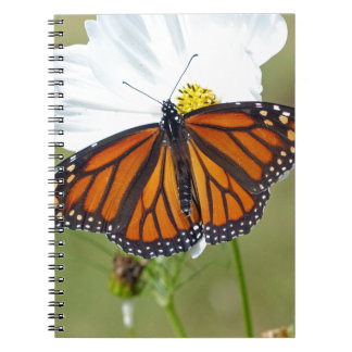 Monarch on Cosmos Spiral Notebooks