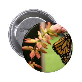 Monarch on Flower 2 Inch Round Button
