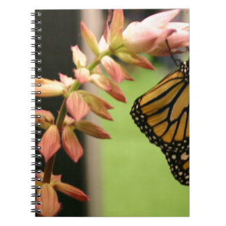 Monarch on Flower Note Book
