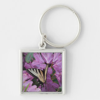 Monarch on Rhododendron Key Chain