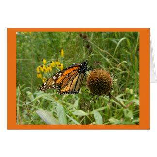 Monarch on Seed Head Blank Note Card