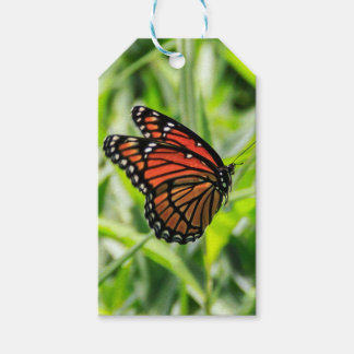 Monarch Pack Of Gift Tags