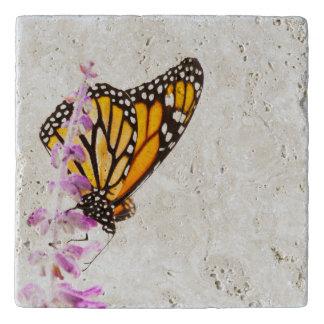 Monarch perched on lavender trivet