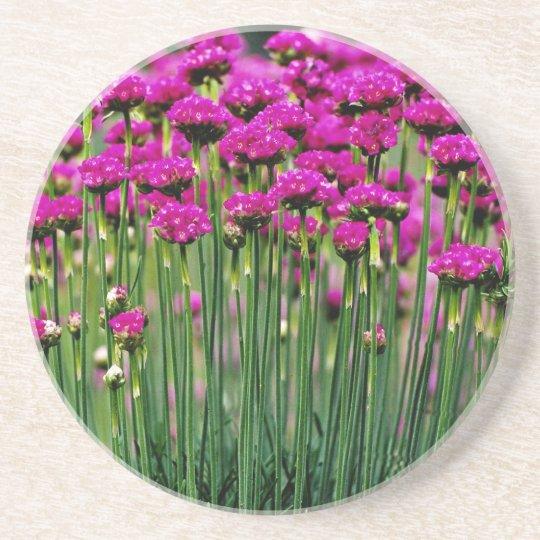 Monards, Quebec, Canada flowers Coaster