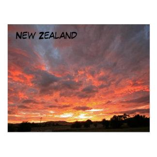 Monday Sunrise Postcard