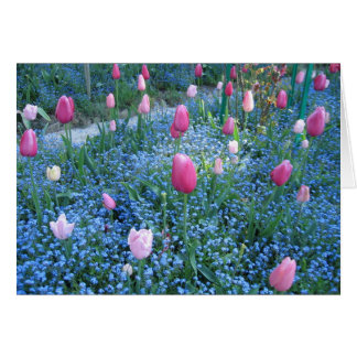 Monet Gardens, Giverny France Thank You Card