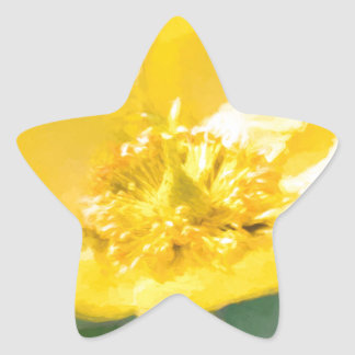 Monetish Star Sticker