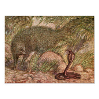 Mongoose and Cobra by Sargent, Vintage Wild Animal Poster