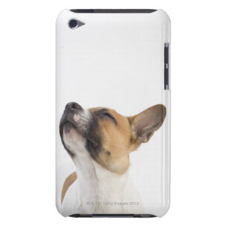Mongrel puppy iPod touch case