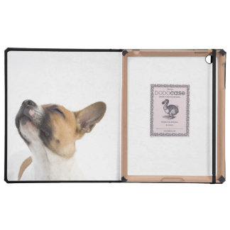 Mongrel puppy case for iPad
