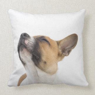 Mongrel puppy throw pillow