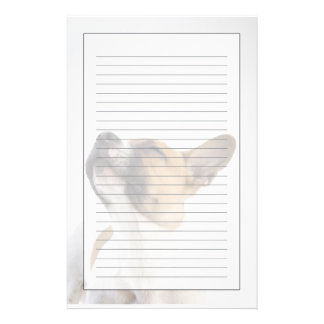 Mongrel puppy stationery paper