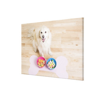 mongrel sitting in front of two bowls with dog stretched canvas prints