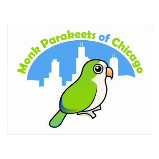 Monk Parakeets of Chicago Postcard