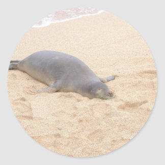 Monk Seal Sleeping Alone on Beach Round Sticker