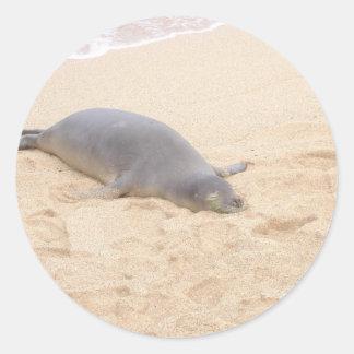 Monk Seal Sleeping Alone on Beach Round Stickers