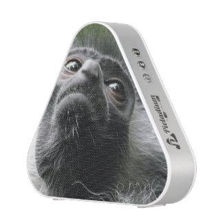monkey-52 blueooth speaker