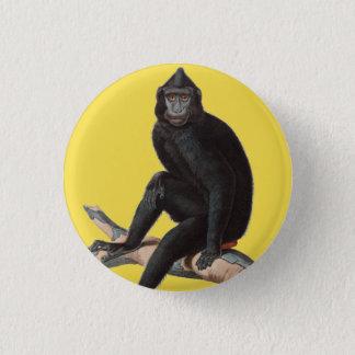Monkey Animal Summer Fun Jungle Tropical Button