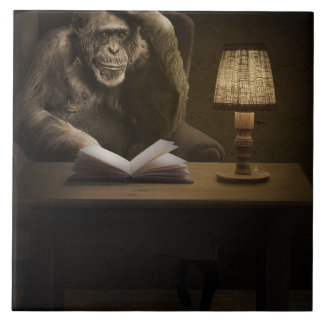 Monkey Ape Chimpanzee Ceramic Tiles