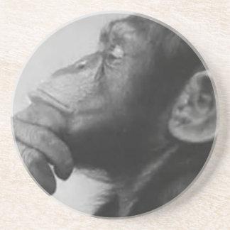 monkey college coaster