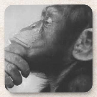 monkey college drink coaster
