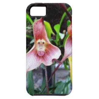 MONKEY Flower: Nature Miracles Wonders iPhone 5 Covers