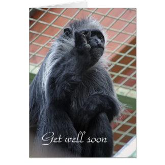 Monkey get well soon card