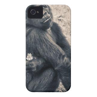 Monkey Holding White Petal Flower iPhone 4 Case