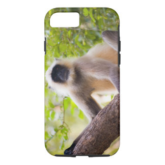 Monkey in jungle of Ranthambore National Park iPhone 7 Case