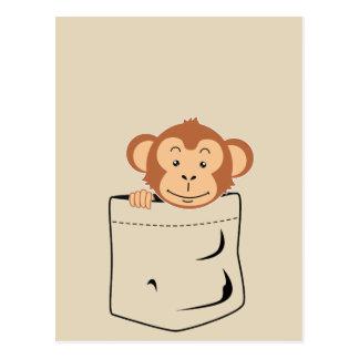 Monkey in pocket postcard