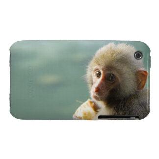 Monkey iPhone 3 Case