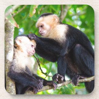 Monkey Love Beverage Coaster