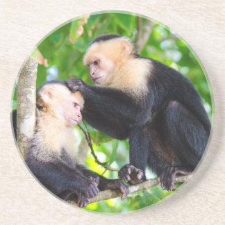 Monkey Love Beverage Coasters
