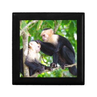 Monkey Love Gift Box