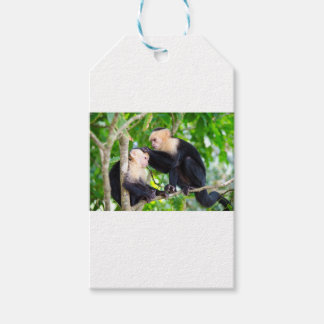 Monkey Love Gift Tags