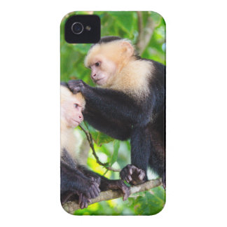 Monkey Love iPhone 4 Covers